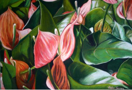 Field of Anthuriums, pastel artwork by Kauai artist Helen Turner